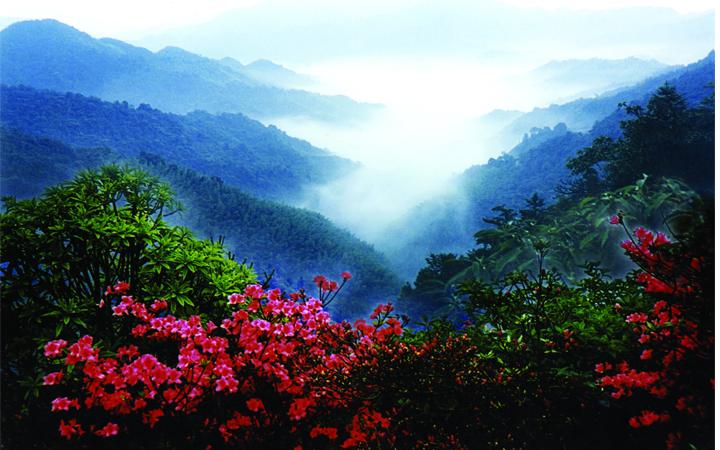 Núi Yangming