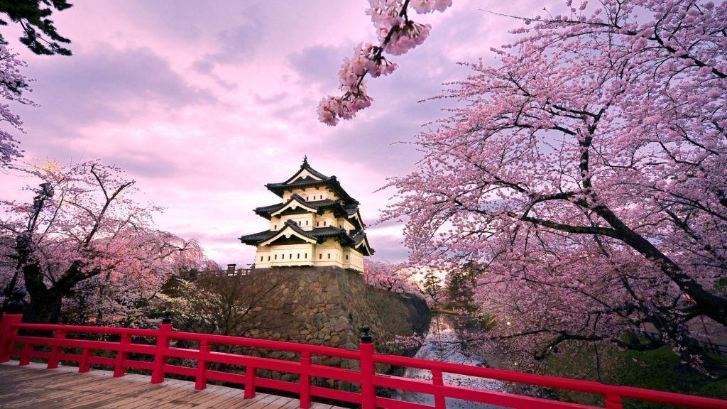 Vé máy bay khuyến mãi tham quan lễ hội mùa xuân ở Nhật Bản