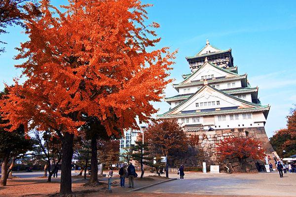 Kyoto - Nhật Bản